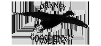 Orkney Goose Hunts